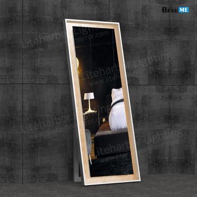 Liteharbor Full-length LED Back-lit Illuminated Mirror